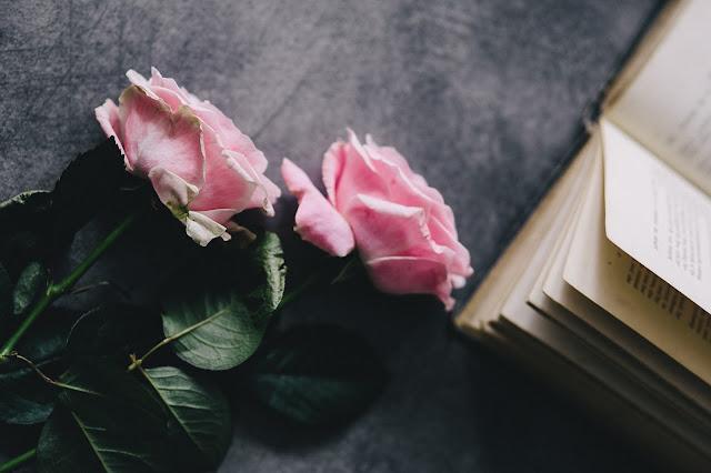 flowers rose fleurs saint valentin