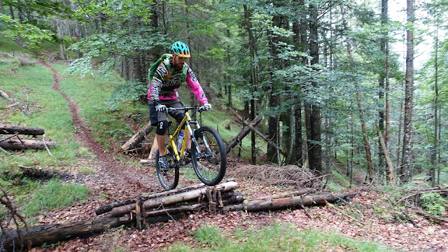 Downhill Enduro Kundl Brach Mountainbike MTB