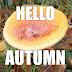 Herfst foto met tekst hello autumn