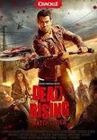 Dead Rising: Watchtower (2015) online y gratis