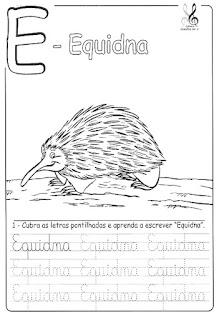Bichonário Equidna