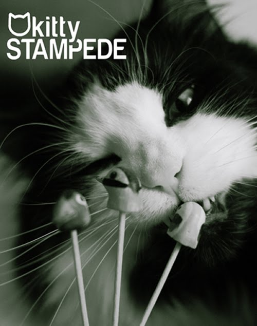 Kitty Stampede