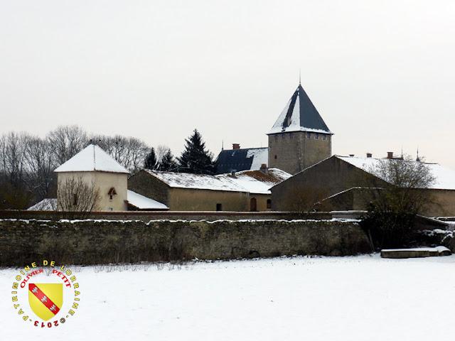 Fléville-les-Nancy - Château enneigé