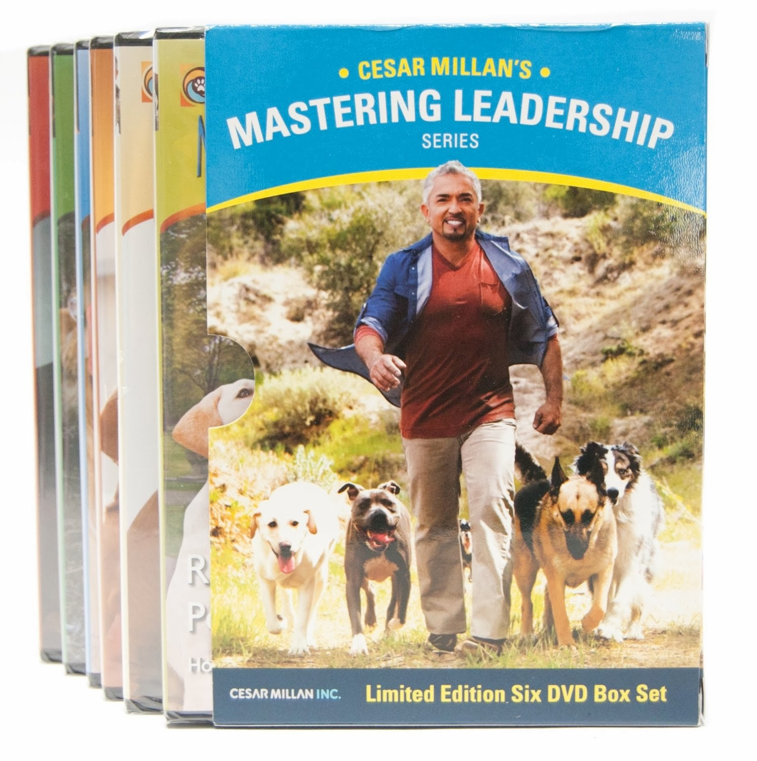 Libro De Cesar Millan Vitaminas Para El éxito Vitamins For Success El