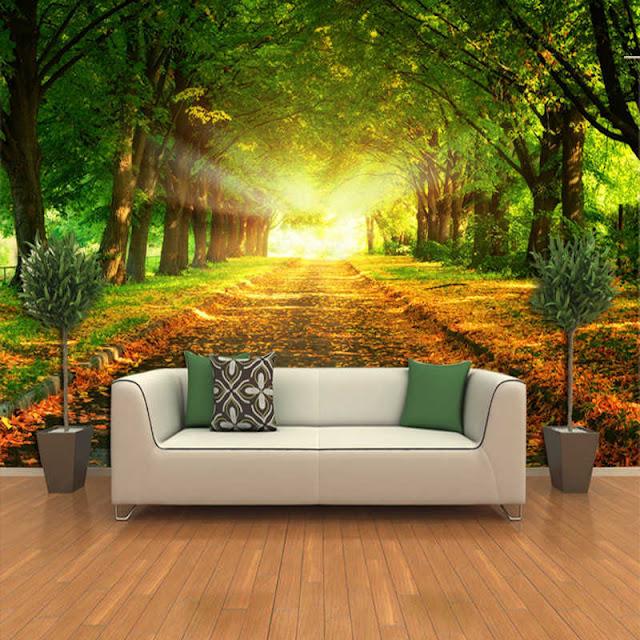 natur tapet träd fototapet stig sol skogstapet