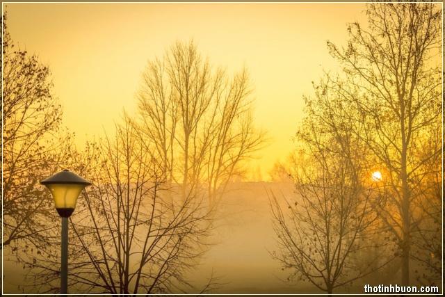 tình thơ buồn cuối mùa thu