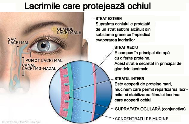 Exerciții pentru ochii persoanelor în vârstă, Exercitii pentru sanatatea ochilor
