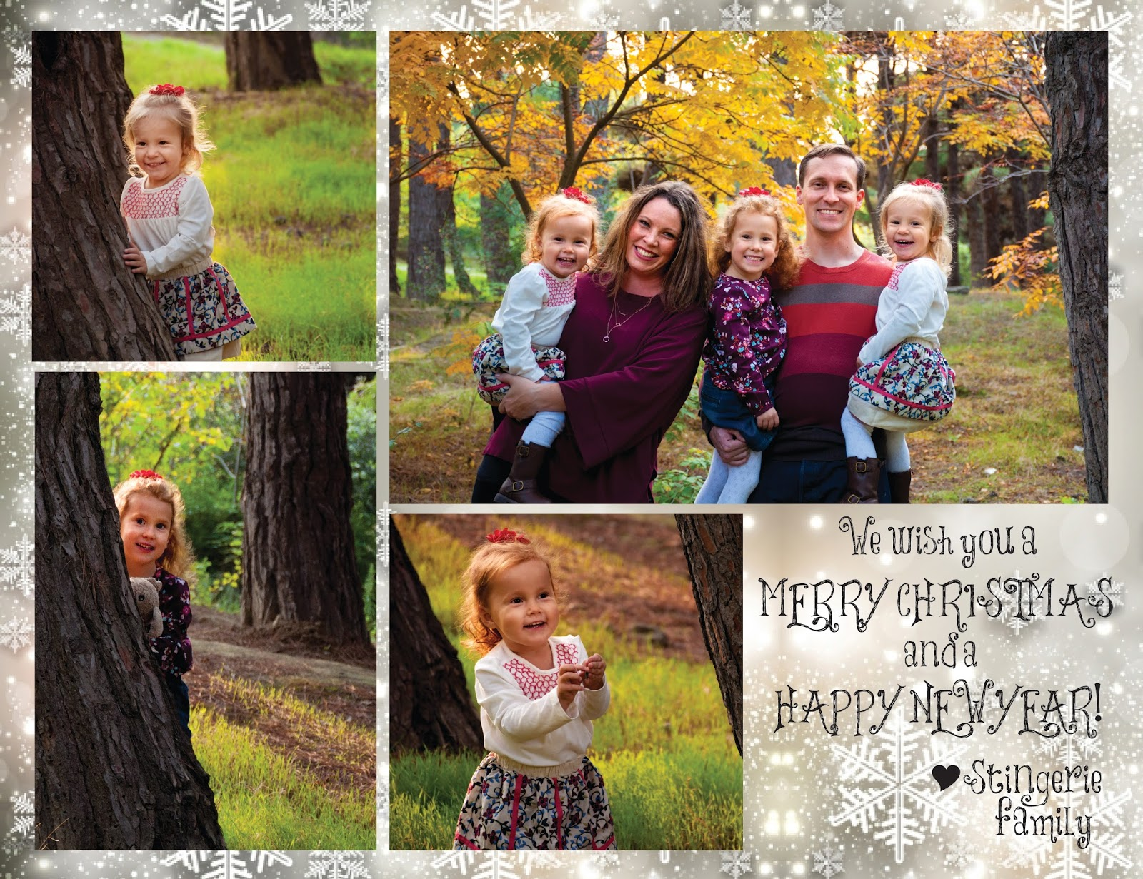 The Stingeries: Christmas Card 2017
