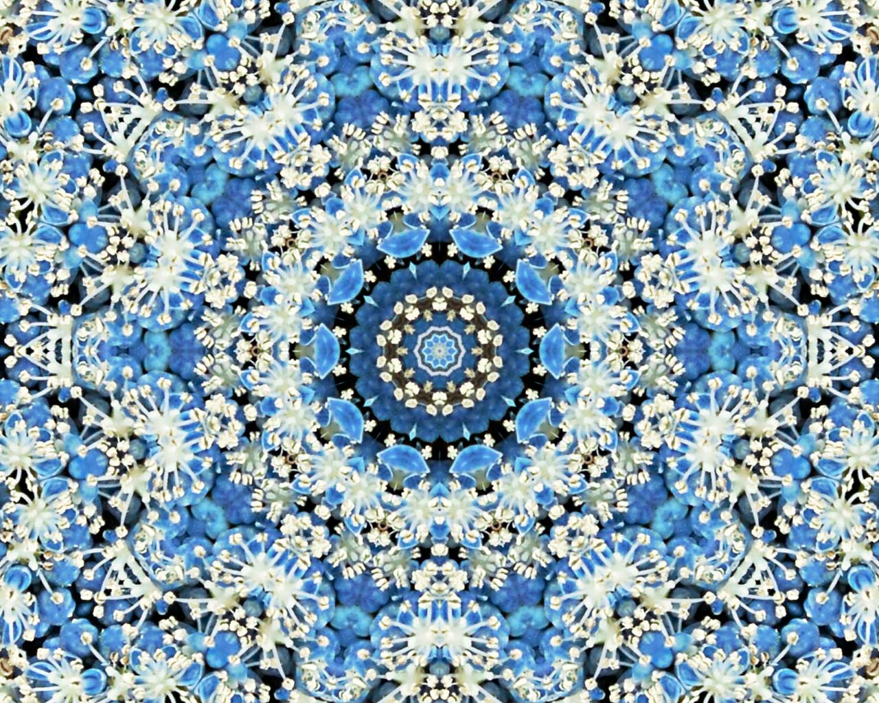 Kaleidoscope free desktop background by Jeanne Selep