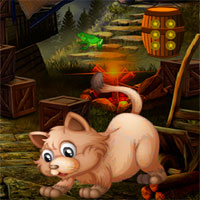 Avmgames Escape Angry Cat