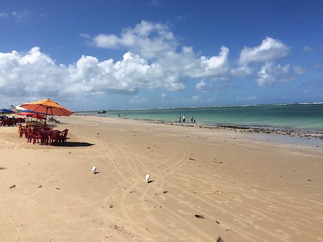 A área da Praia de Tamandaré com maior infraestrutura