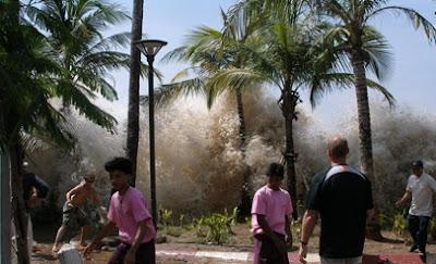 Lolos dari kejaran Tsunami