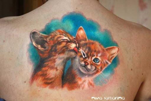 Estes gatinhos fofinhos