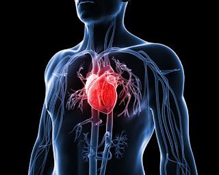 Cara Mengobati Penyakit Jantung Ringan