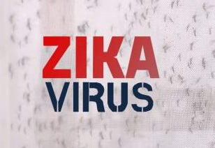 zika-virus-causes-symptoms-prevention-treatment-hindi