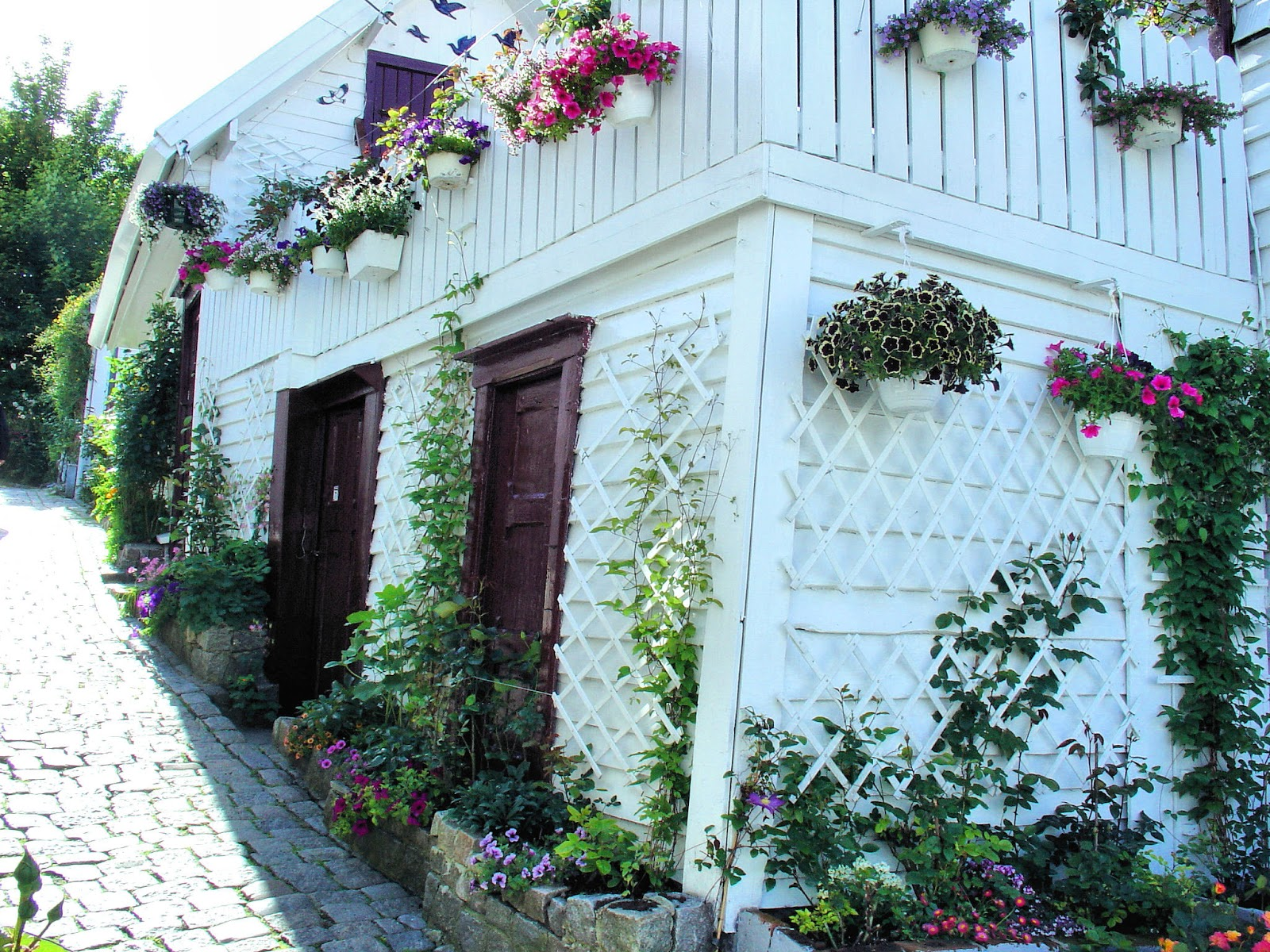 An enchanted cottage in Old Stavanger.