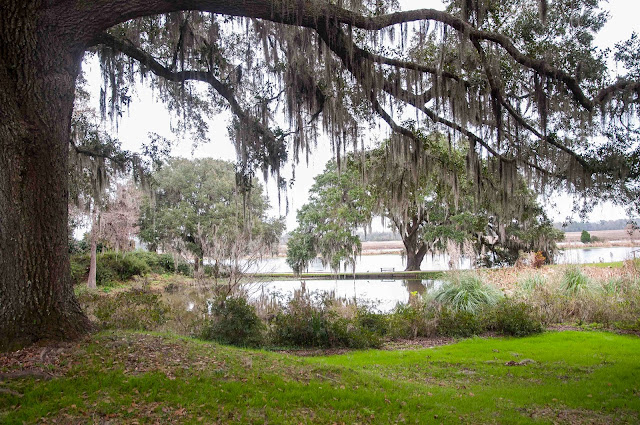 beautiful Middleton place