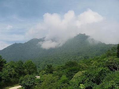 Khám phá cảnh đẹp bí mật ngàn xanh trên đỉnh non Tản Ba Vì