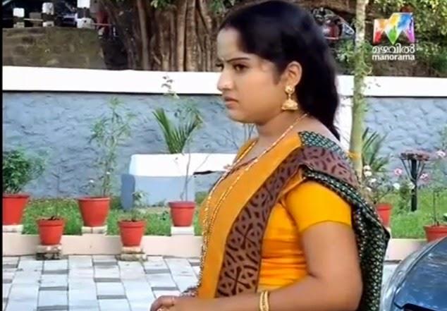 Mallu Serial Actress Hot Side View Photos In Saree