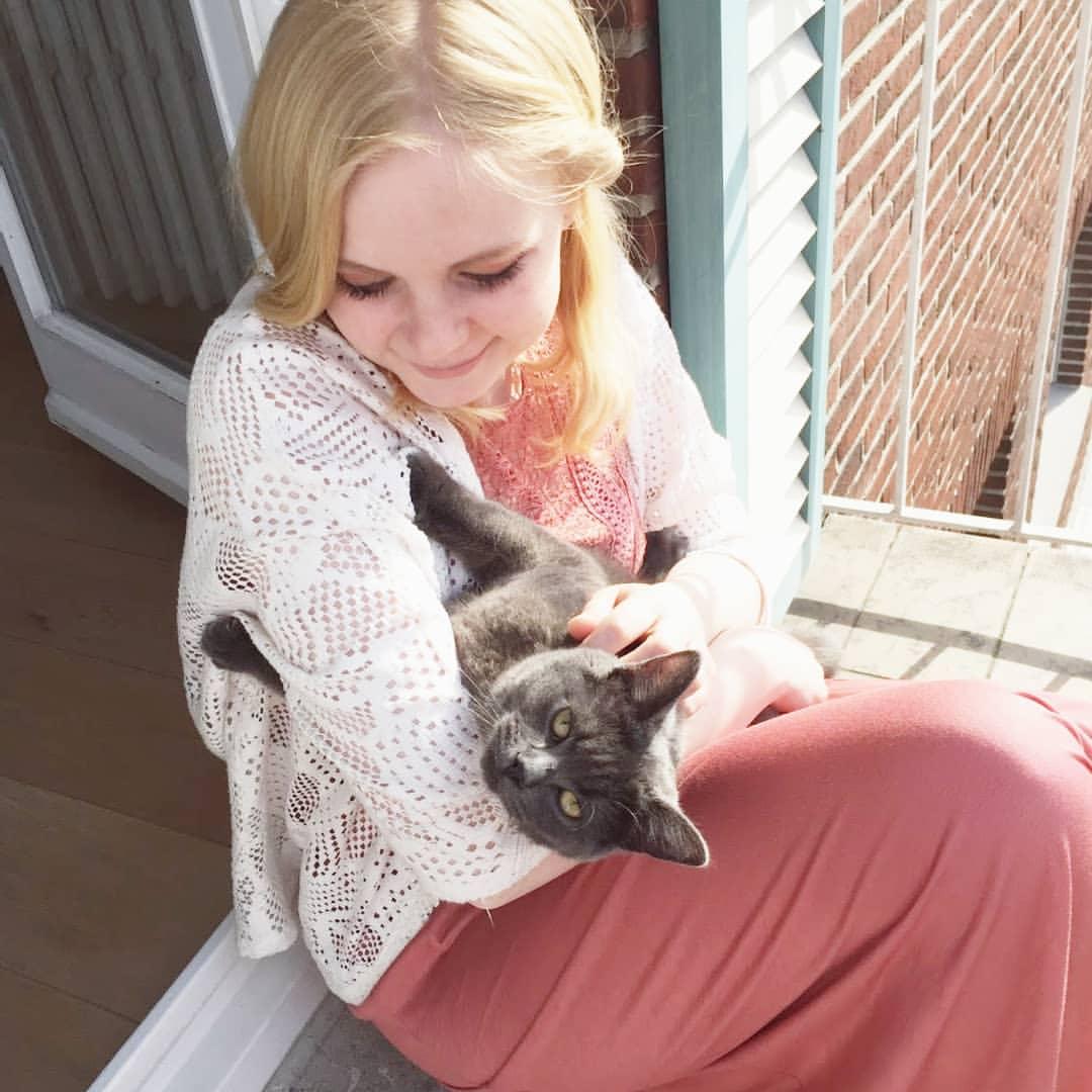10 redenen om je kat uit het asiel te halen