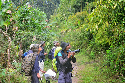 """Birding Holiday in Northern Myanmar"""