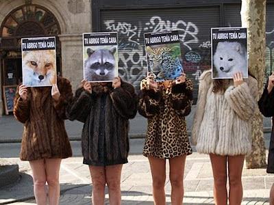 Tipos de pieles de animales para abrigos