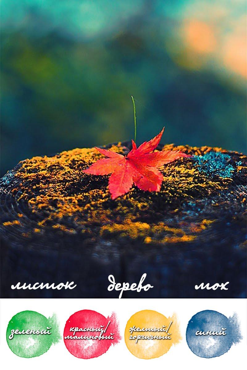 Красочный Сентябрь