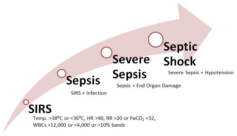 Nursing Diagnosis and Nursing Intervention for Sepsis ...
