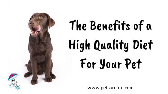 quality pet food