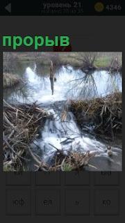 Плотину размыло водой.В настоящий прорыв сквозь ограждение потекла грязная вода из водоема.