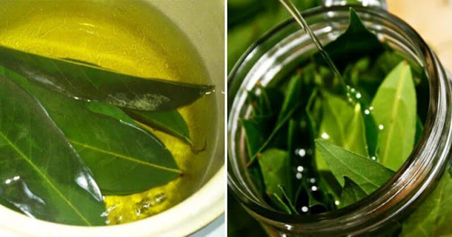 This Leaf is a Blessing From God: Fight Insomnia, High Blood Pressure, Sugar and Blood Fat