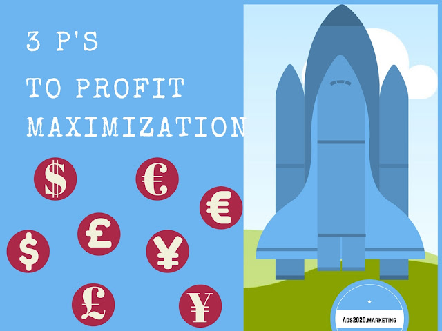 3 P's To Profit Maximisation: How to Achieve Maximum Profits-800x400