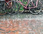 foto uit Het klimaat past ook in uw straatje : de waarde van klimaatbestendig inrichten: voorbeeldenboek