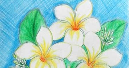 Cara Menggambar Bunga Kamboja Langkah Demi Langkah Ar Production
