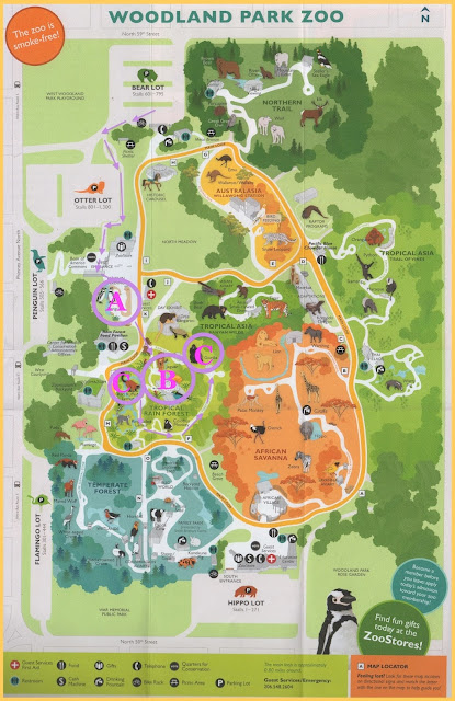 Randuwa Spring Break Redux The Woodland Park Zoo Part 3