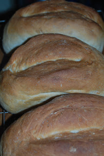A basic bread recipe that we love to bake everyday.