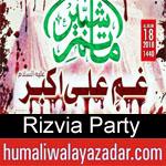 https://www.humaliwalyazadar.com/2018/09/rizvia-party-nohay-2019.html