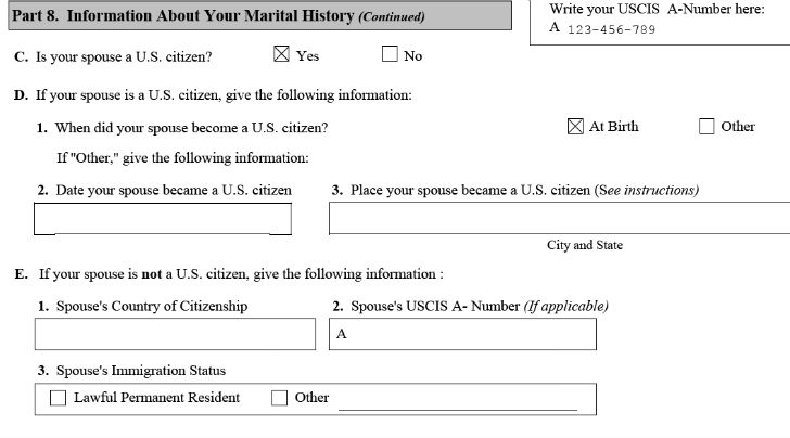 Americans Are US Completed Form N-400 sample for naturalization