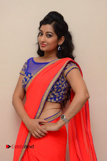 Actress Tejaswini Pictures in Saree at Pratikshanam Audio Launch  0016.JPG