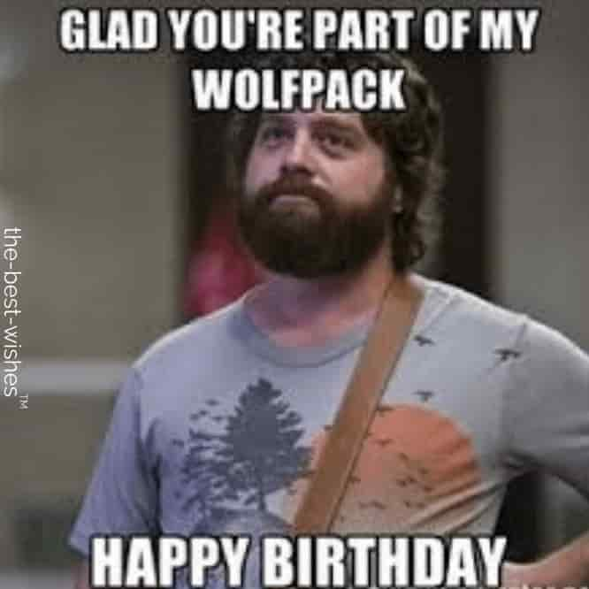 wolfpack happy birthday memes wishes