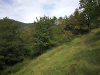 countryside spain