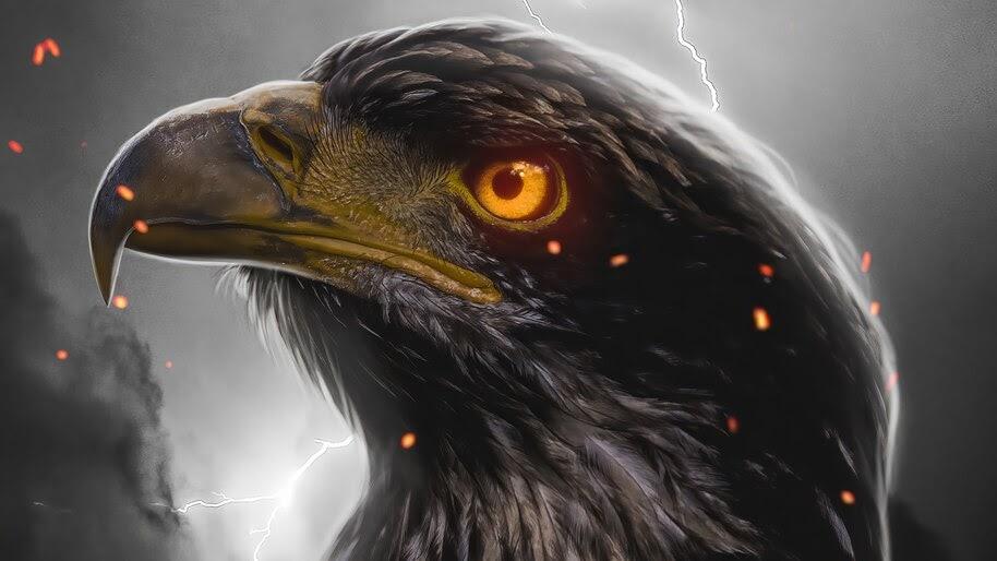 Eagle Eye, 4K, #6.451