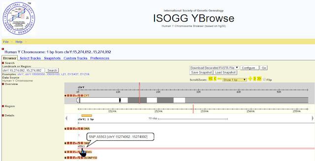 ISOGG YBrowse