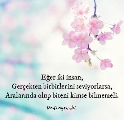 çiçek, ağaç çiçeği, zemin, sevgi, aşk, fedakarlık, sır, sır tutmak, dostoyevski, güzel sözler, özlü sözler, anlamlı sözler