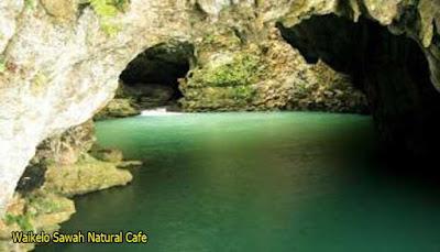 Waikelo Sawah Natural Cafe