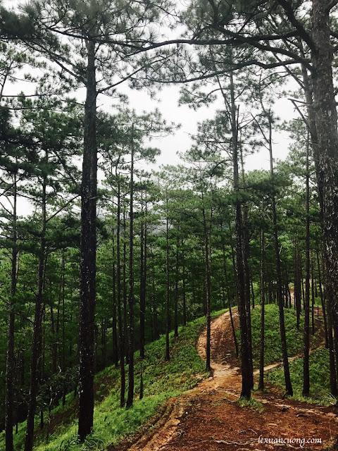 Trekking%2BTa%2BNang%2BPhan%2BDung%2B11 - Cung đường trekking Tà Năng - Phan Dũng ngày trở lại, mùa mưa 2016