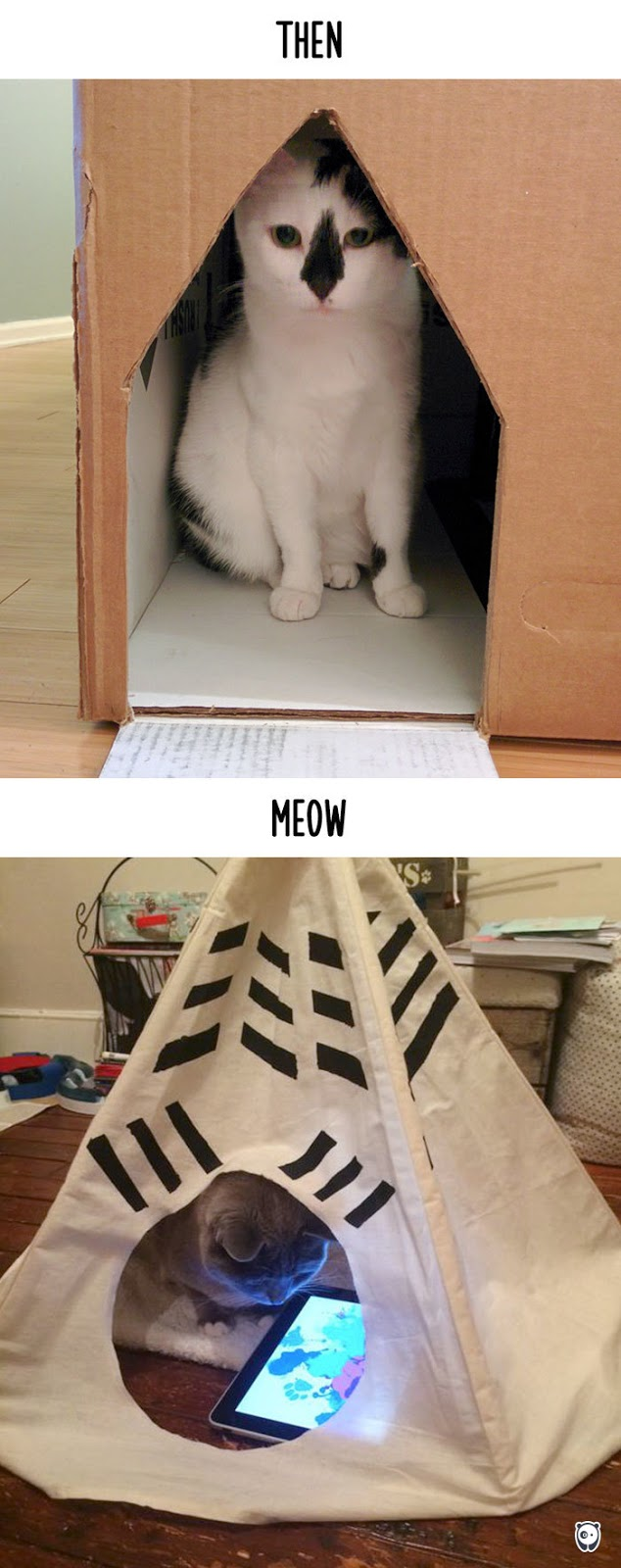 Then vs Meow How Technology Has Changed Cats' Lives (10+ Pics) - Housing
