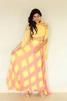 Dhanya Balakrishna Glam Photo Shoot HeyAndhra.com