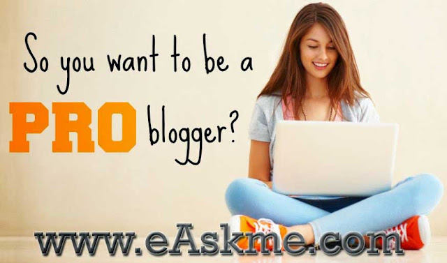 Why You Can`t Make Money Blogging Like ProBloggers : eAskme