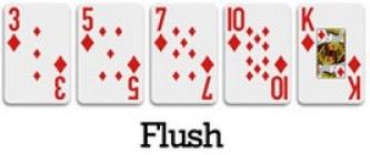 Flush / Plas